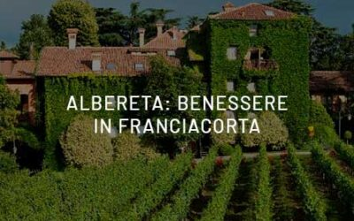 Albareta: a wellness break surrounded by vineyards, harmony and natural beauty.